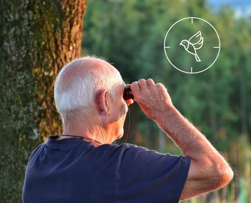 Birdwatching Guide - Birding Information For Everyone